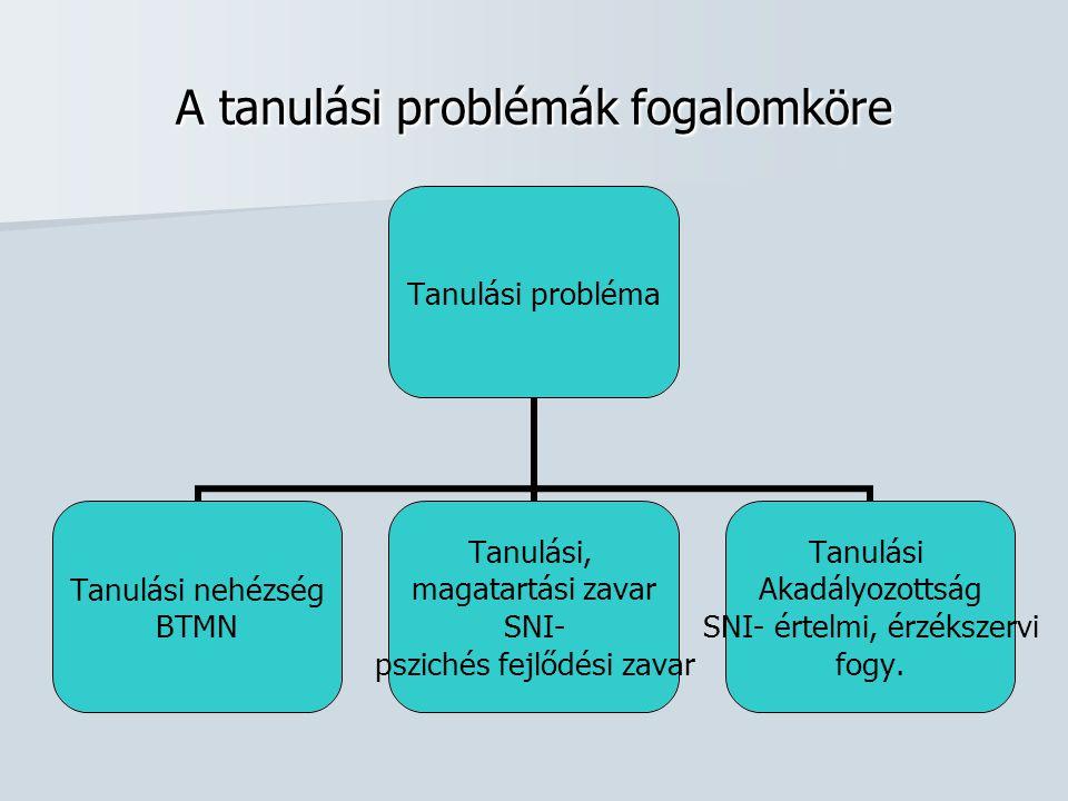 A tanulási problémák fogalomköre