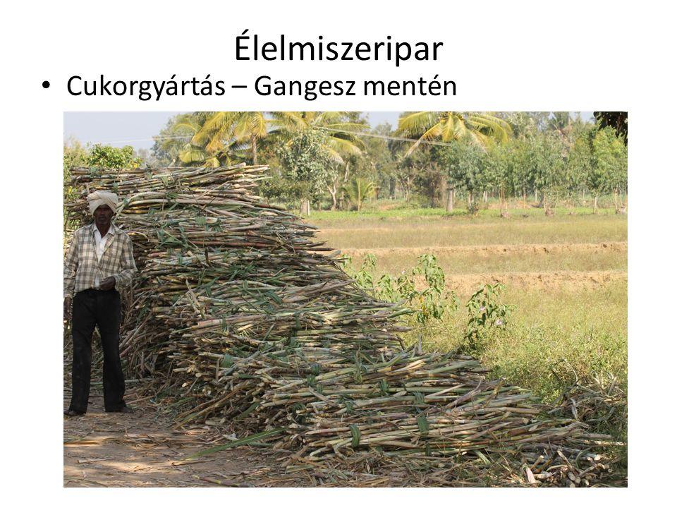 Élelmiszeripar Cukorgyártás – Gangesz mentén