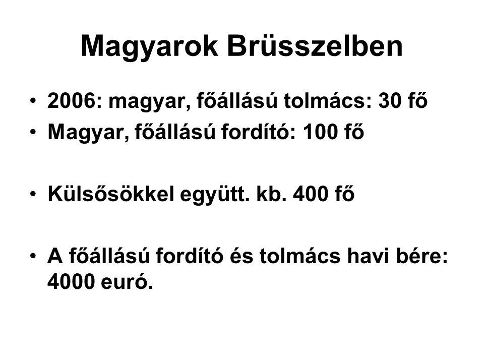 Magyarok Brüsszelben 2006: magyar, főállású tolmács: 30 fő