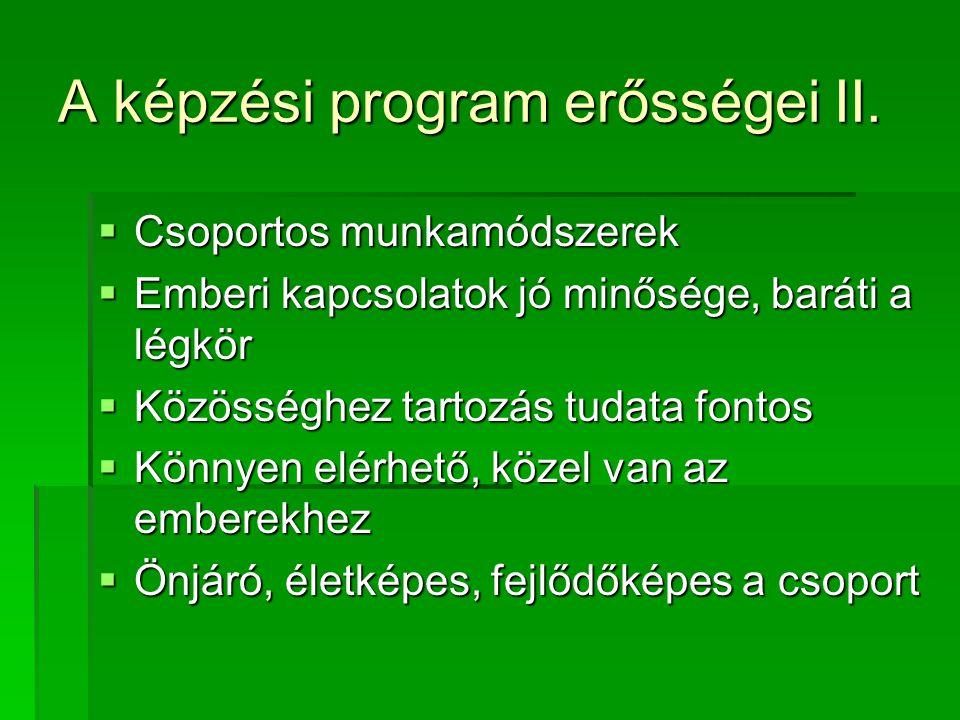 A képzési program erősségei II.