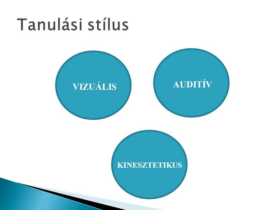 Tanulási stílus AUDITÍV VIZUÁLIS KINESZTETIKUS