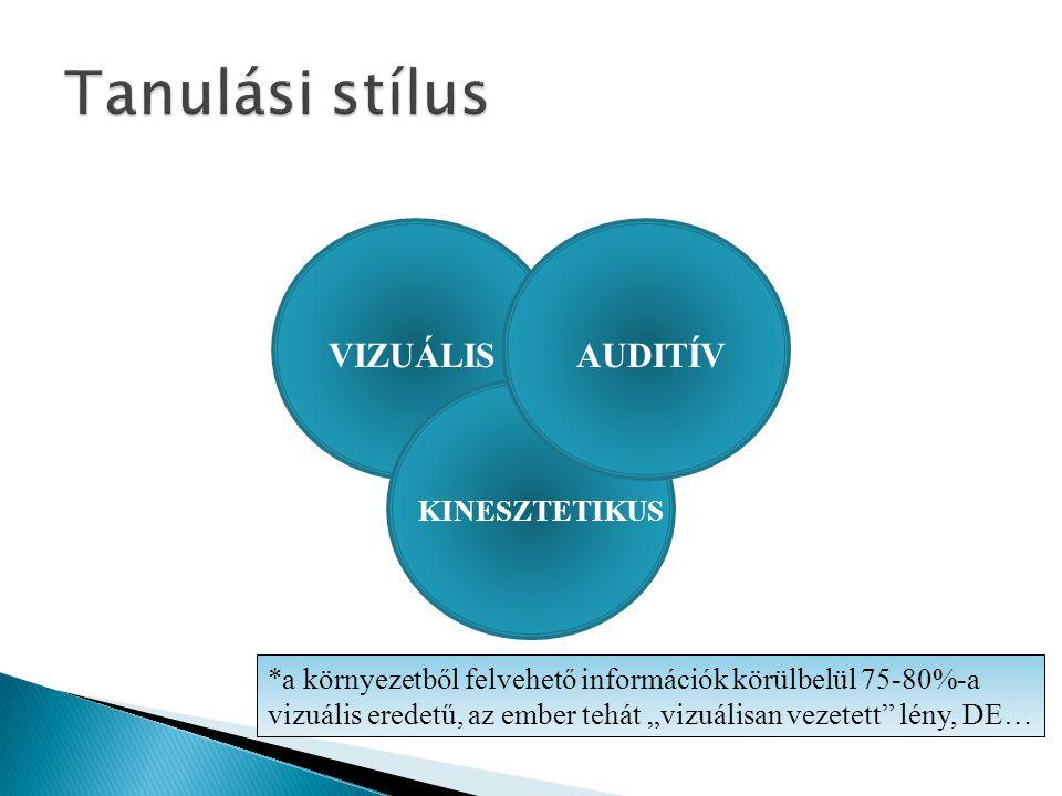 Tanulási stílus VIZUÁLIS AUDITÍV KINESZTETIKUS
