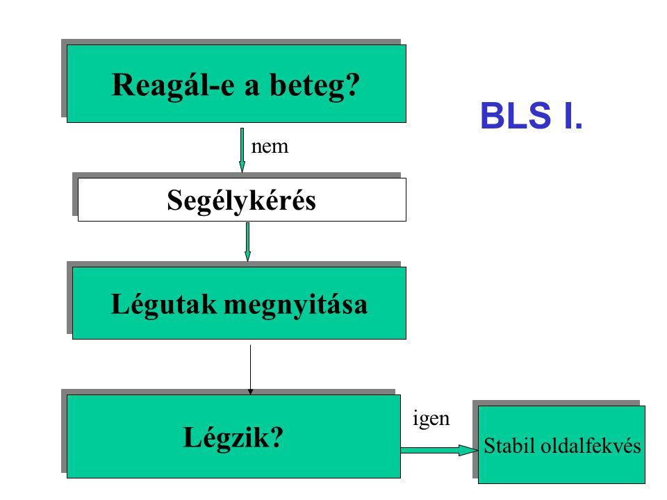 BLS I. Reagál-e a beteg Segélykérés Légutak megnyitása Légzik nem