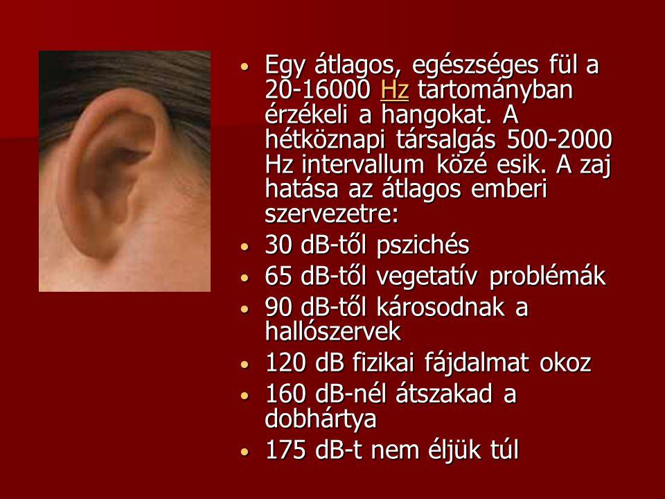Egy átlagos, egészséges fül a 20-16000 Hz tartományban érzékeli a hangokat. A hétköznapi társalgás 500-2000 Hz intervallum közé esik. A zaj hatása az átlagos emberi szervezetre: