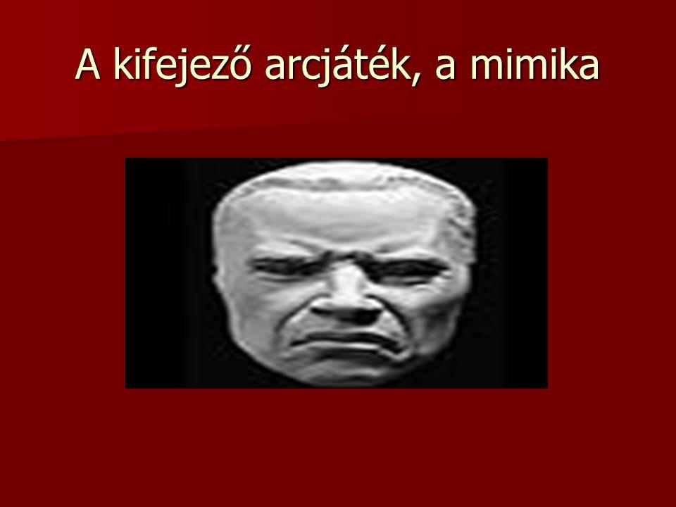 A kifejező arcjáték, a mimika