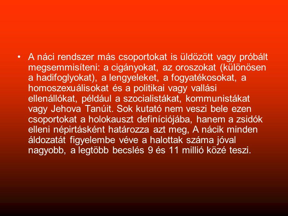 A náci rendszer más csoportokat is üldözött vagy próbált megsemmisíteni: a cigányokat, az oroszokat (különösen a hadifoglyokat), a lengyeleket, a fogyatékosokat, a homoszexuálisokat és a politikai vagy vallási ellenállókat, például a szocialistákat, kommunistákat vagy Jehova Tanúit.