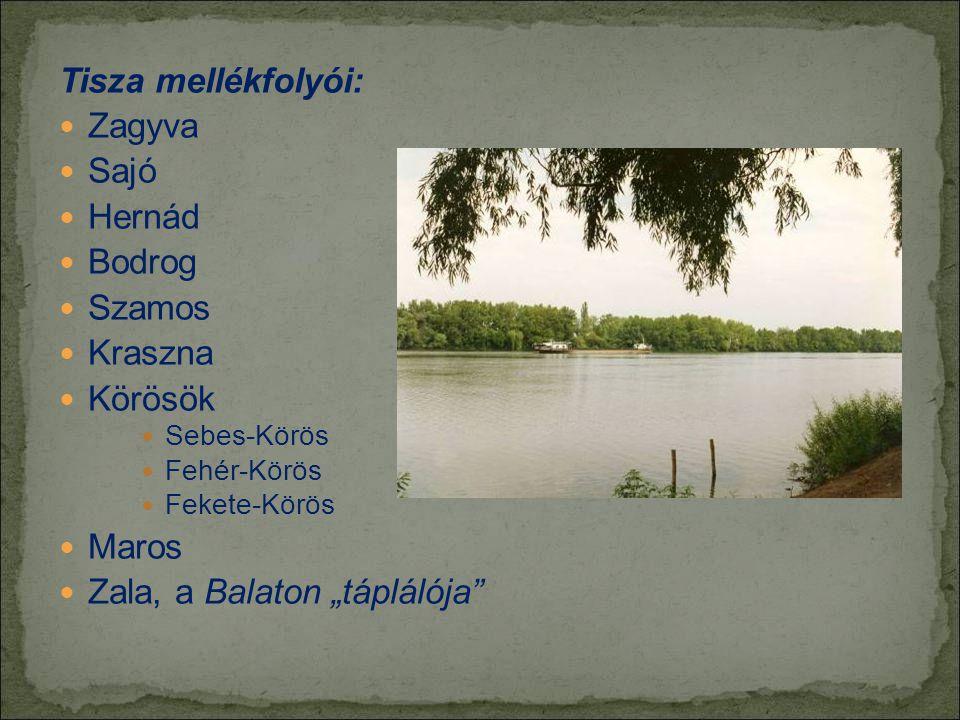 """Zala, a Balaton """"táplálója"""