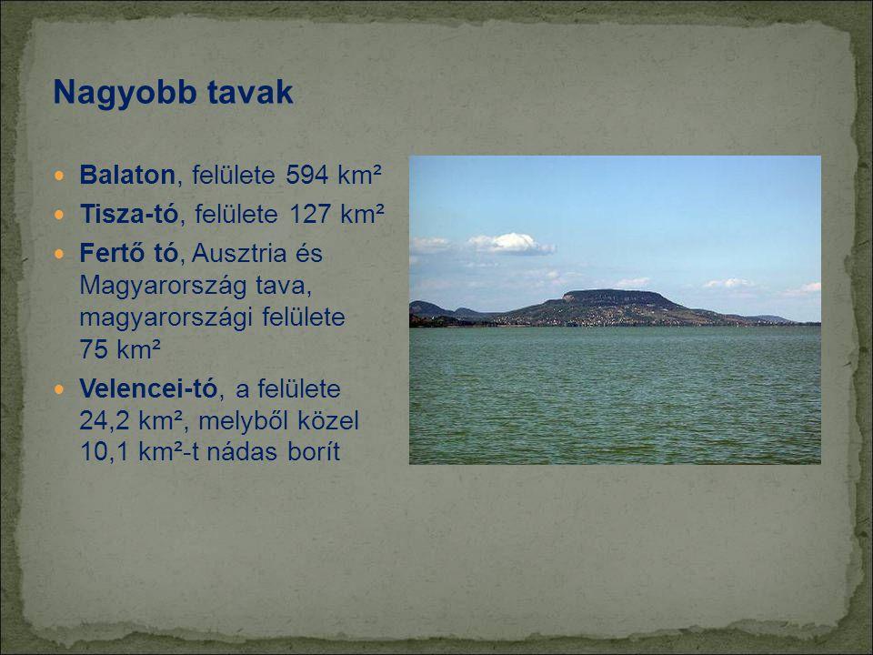 Nagyobb tavak Balaton, felülete 594 km² Tisza-tó, felülete 127 km²