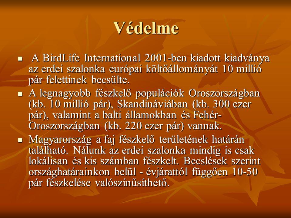 Védelme A BirdLife International 2001-ben kiadott kiadványa az erdei szalonka európai költőállományát 10 millió pár felettinek becsülte.