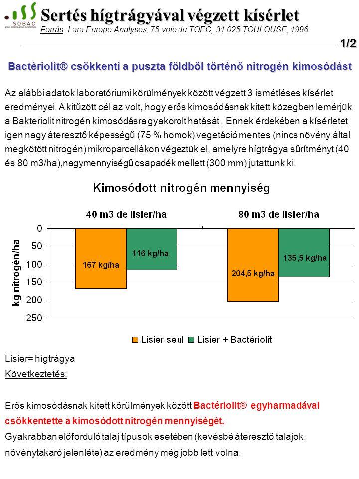 Bactériolit® csökkenti a puszta földből történő nitrogén kimosódást