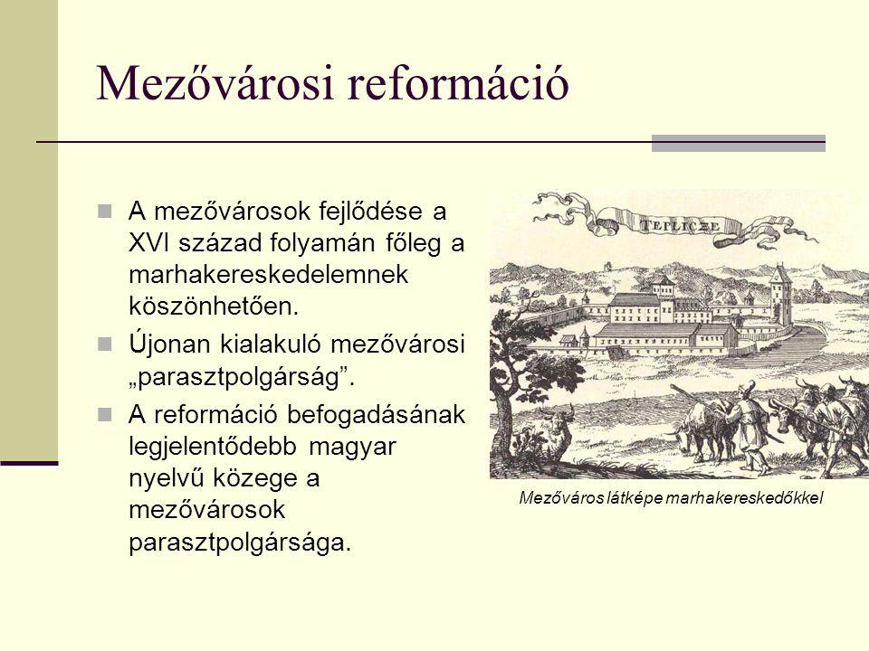 Mezővárosi reformáció