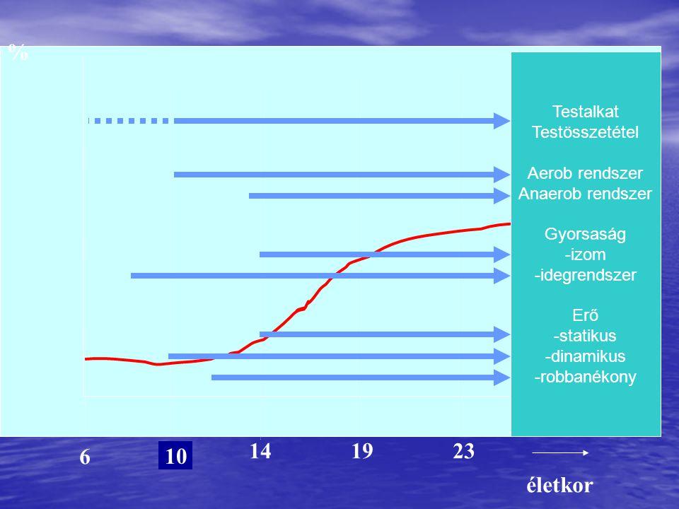 % 14 19 23 6 10 életkor Testalkat Testösszetétel Aerob rendszer