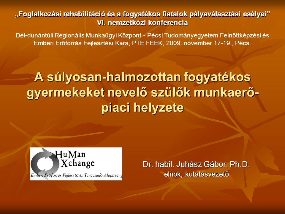 Dr. habil. Juhász Gábor, Ph.D. elnök, kutatásvezető