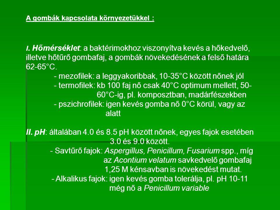 - mezofilek: a leggyakoribbak, 10-35°C között nőnek jól