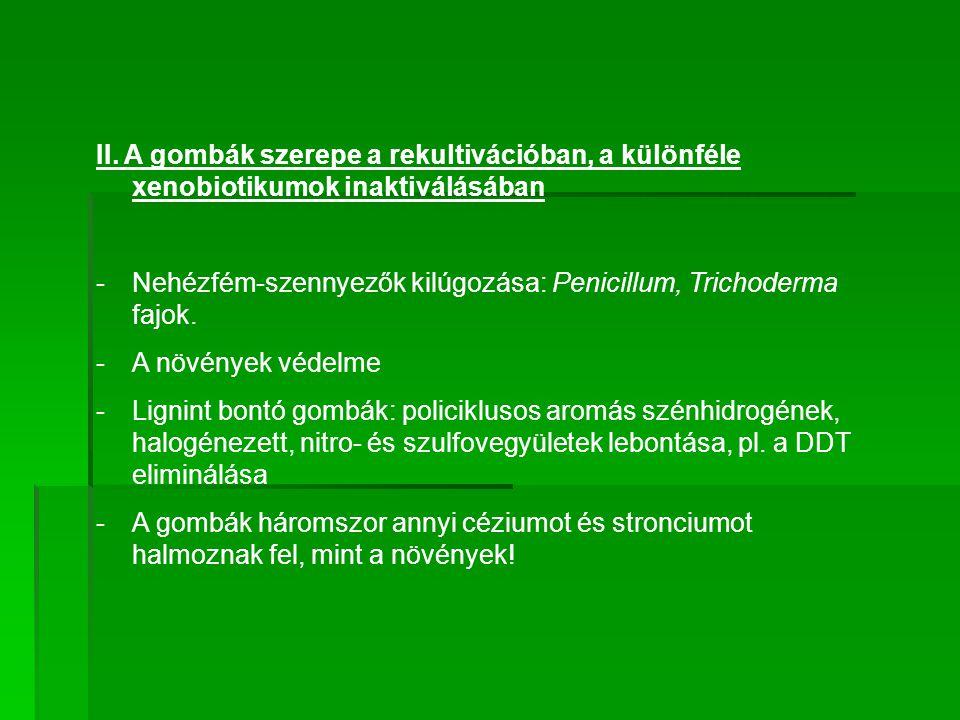 II. A gombák szerepe a rekultivációban, a különféle xenobiotikumok inaktiválásában