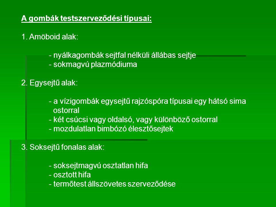 A gombák testszerveződési típusai: