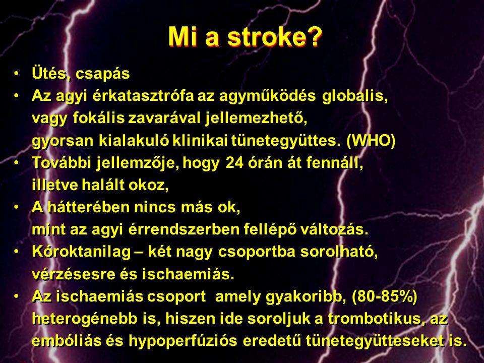 Mi a stroke Ütés, csapás. Az agyi érkatasztrófa az agyműködés globalis, vagy fokális zavarával jellemezhető,