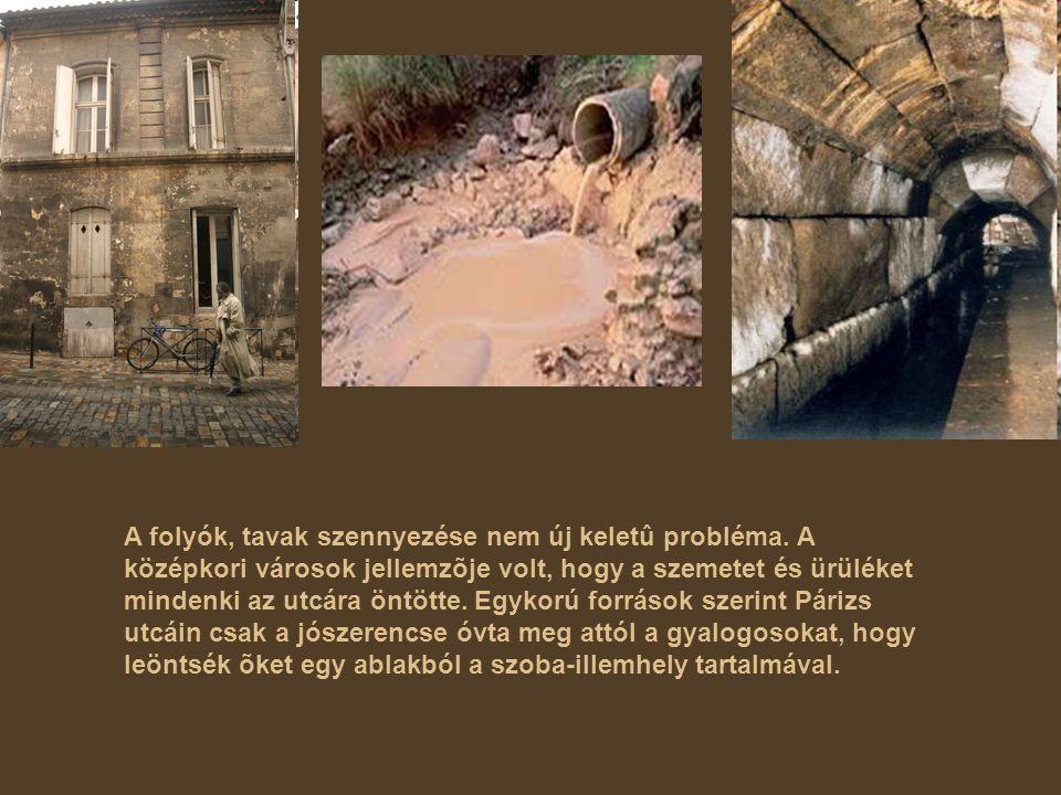A folyók, tavak szennyezése nem új keletû probléma