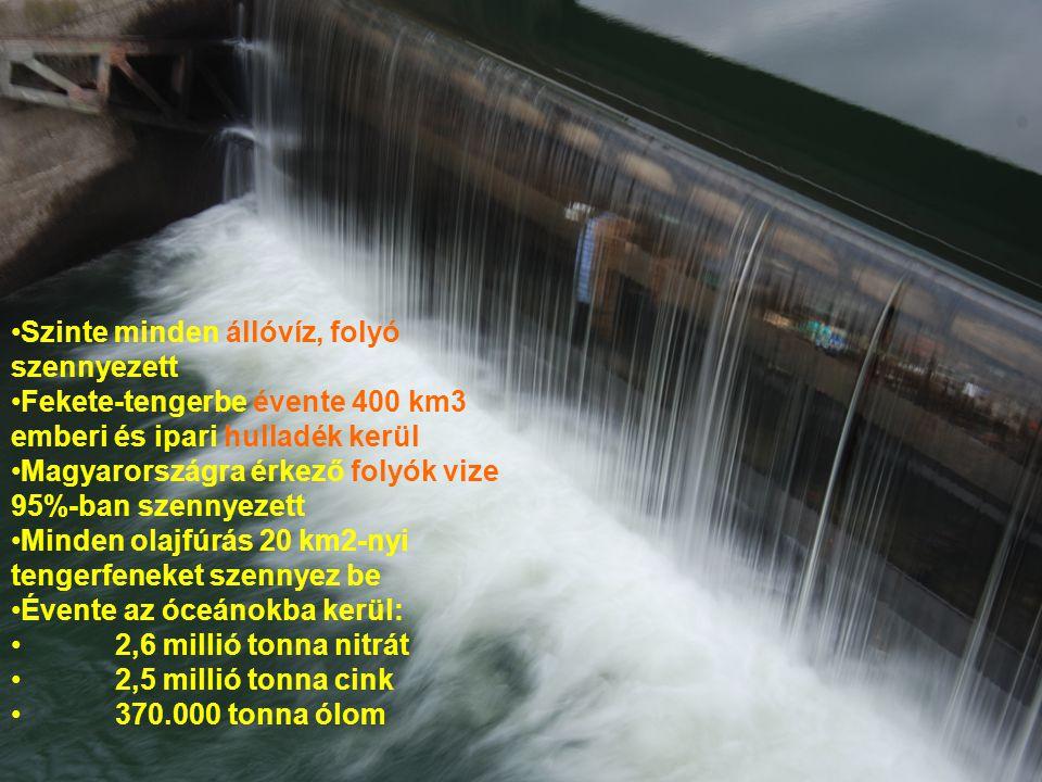 Szinte minden állóvíz, folyó szennyezett