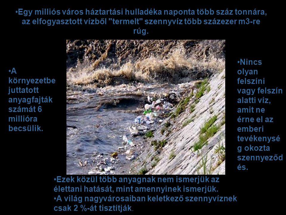 Egy milliós város háztartási hulladéka naponta több száz tonnára, az elfogyasztott vízből termelt szennyvíz több százezer m3-re rúg.