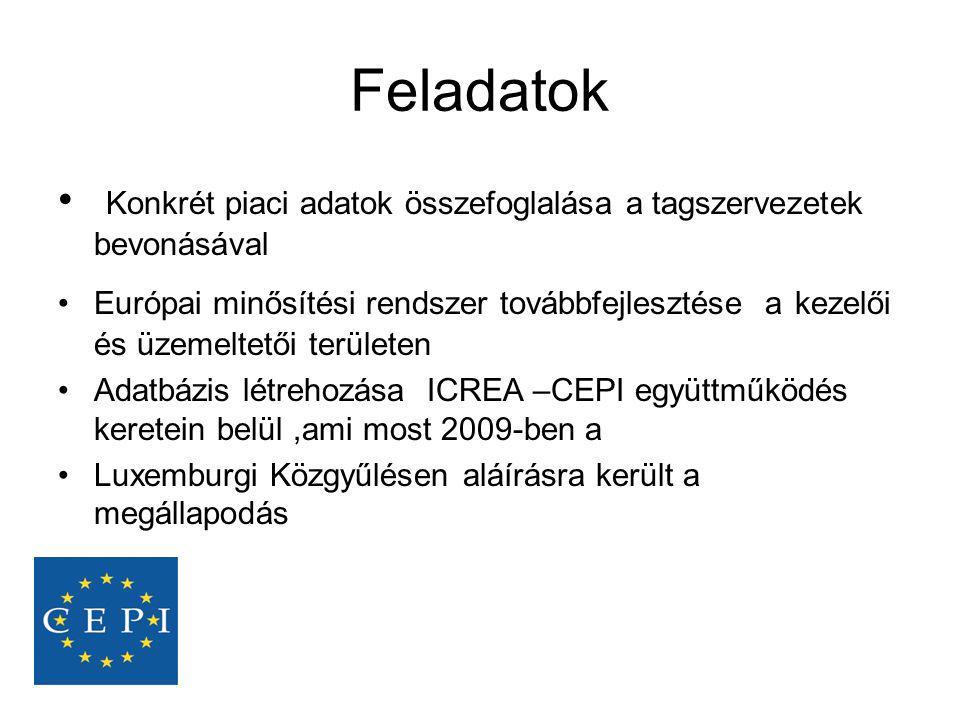 Feladatok Konkrét piaci adatok összefoglalása a tagszervezetek bevonásával.