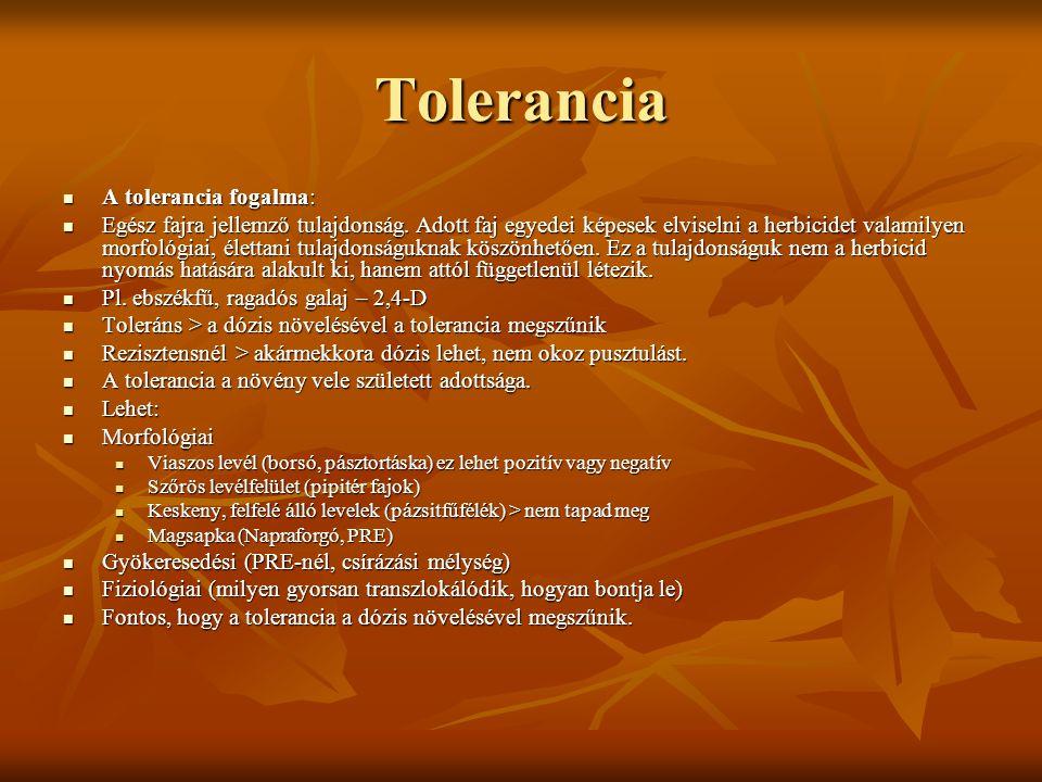 Tolerancia A tolerancia fogalma: