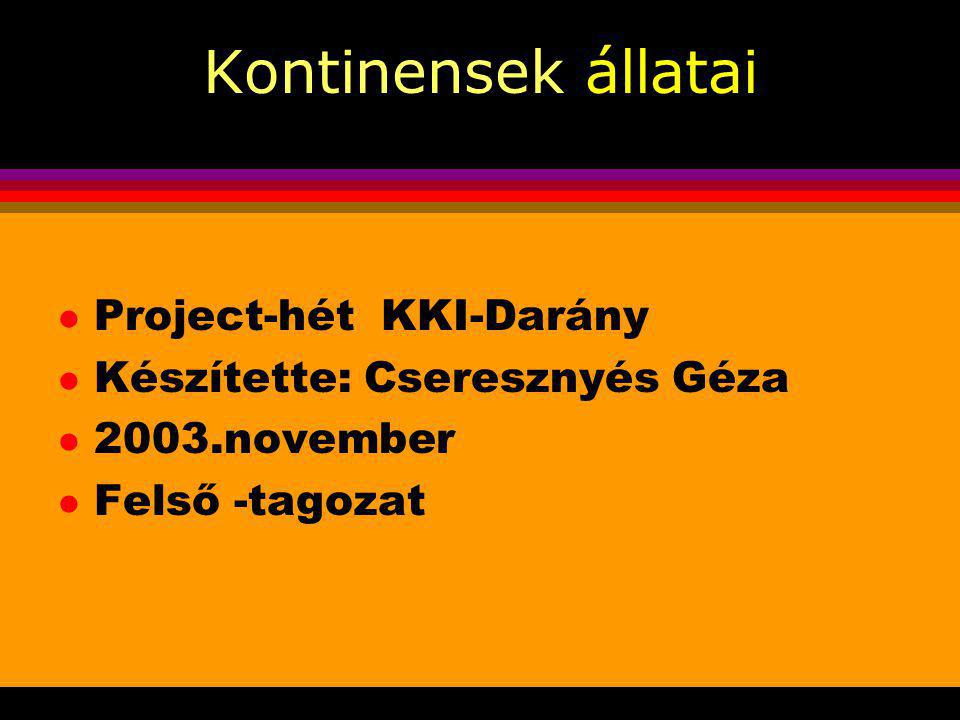 Kontinensek állatai Project-hét KKI-Darány