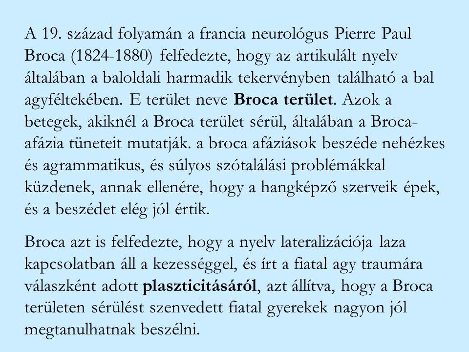 A 19. század folyamán a francia neurológus Pierre Paul Broca (1824-1880) felfedezte, hogy az artikulált nyelv általában a baloldali harmadik tekervényben található a bal agyféltekében. E terület neve Broca terület. Azok a betegek, akiknél a Broca terület sérül, általában a Broca-afázia tüneteit mutatják. a broca afáziások beszéde nehézkes és agrammatikus, és súlyos szótalálási problémákkal küzdenek, annak ellenére, hogy a hangképző szerveik épek, és a beszédet elég jól értik.