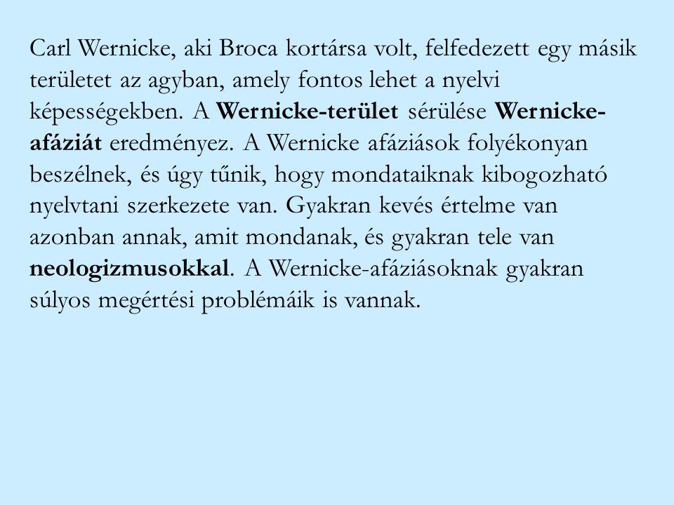 Carl Wernicke, aki Broca kortársa volt, felfedezett egy másik területet az agyban, amely fontos lehet a nyelvi képességekben.