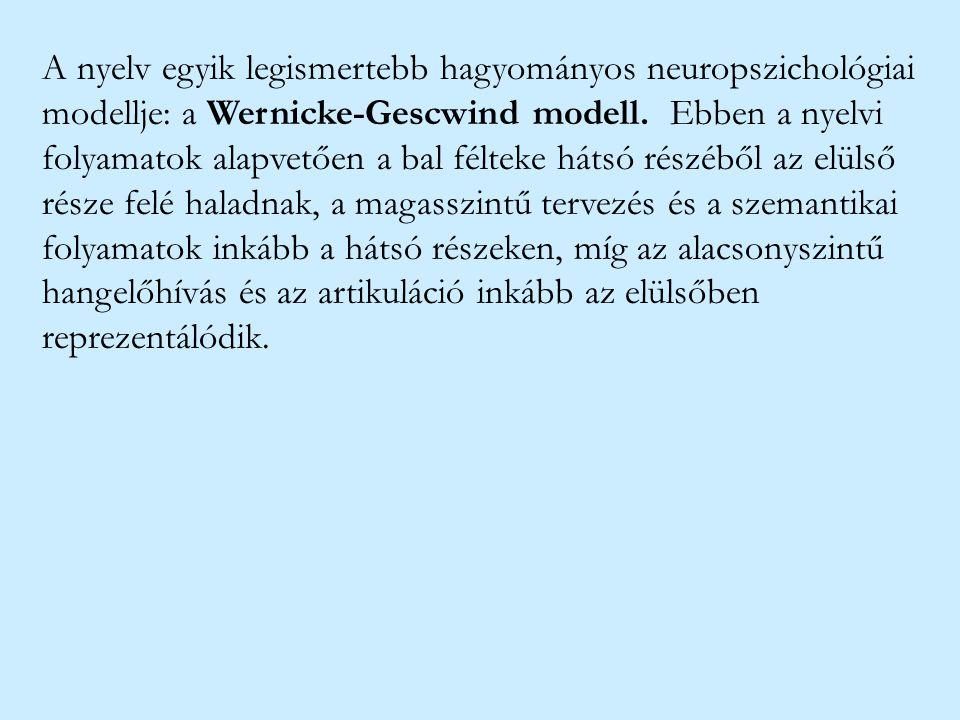 A nyelv egyik legismertebb hagyományos neuropszichológiai modellje: a Wernicke-Gescwind modell.