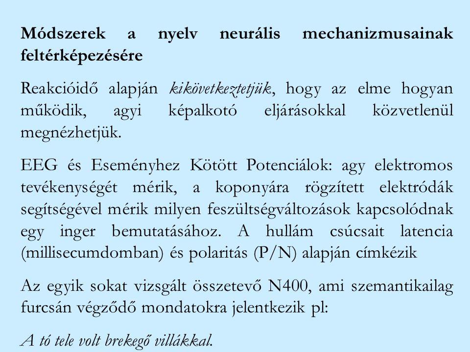 Módszerek a nyelv neurális mechanizmusainak feltérképezésére