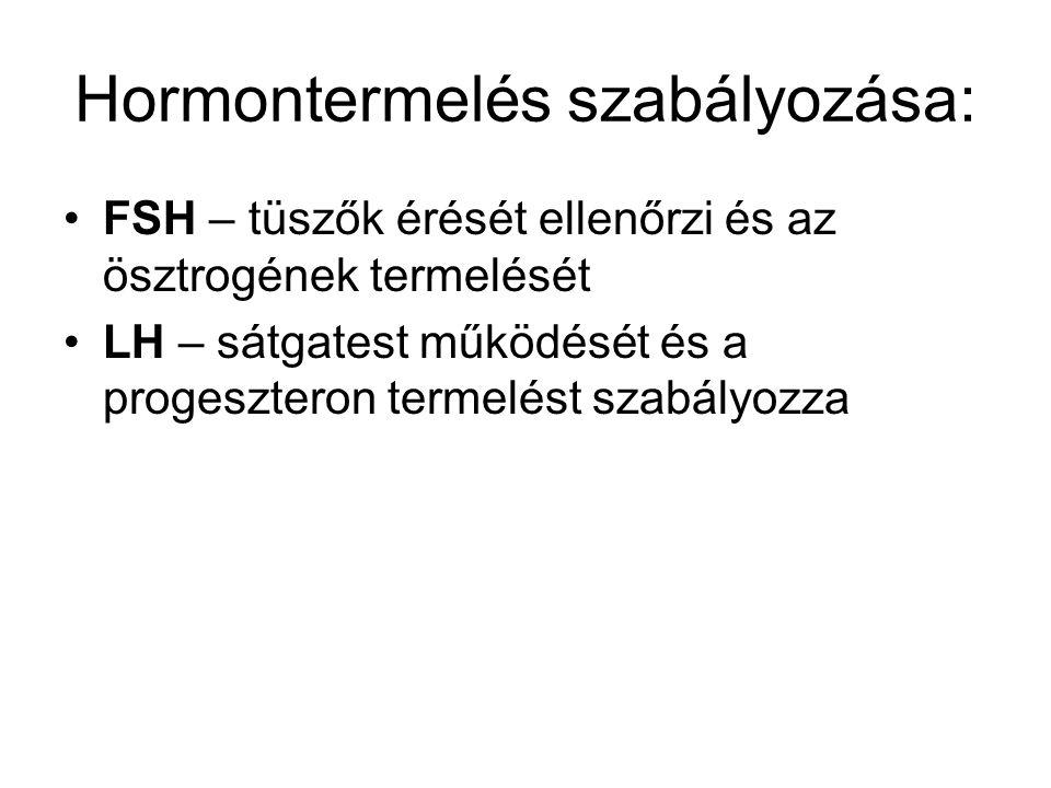 Hormontermelés szabályozása: