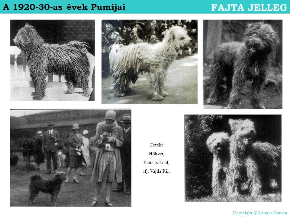 FAJTA JELLEG A 1920-30-as évek Pumijai Fotók: Höltzer, Raitsits Emil,