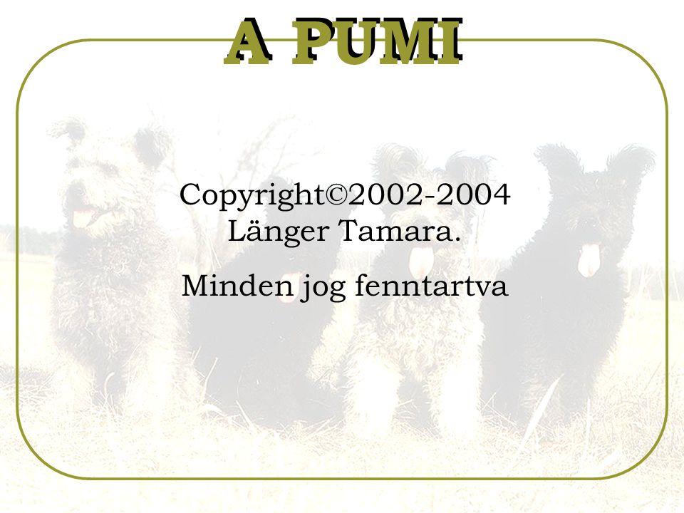 Copyright©2002-2004 Länger Tamara.