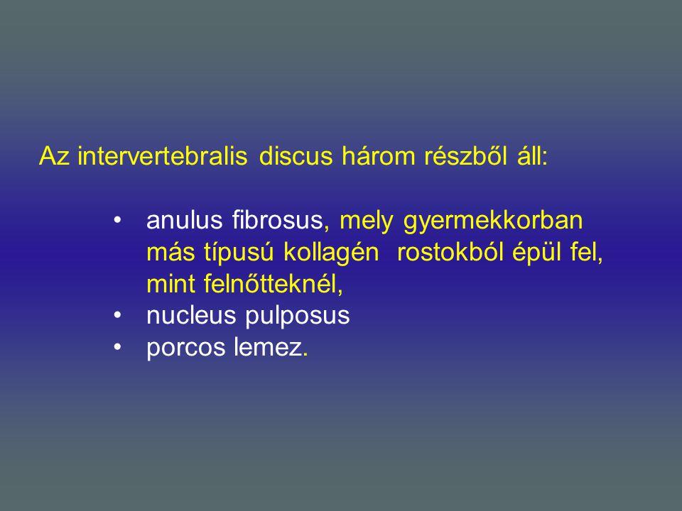 Az intervertebralis discus három részből áll: