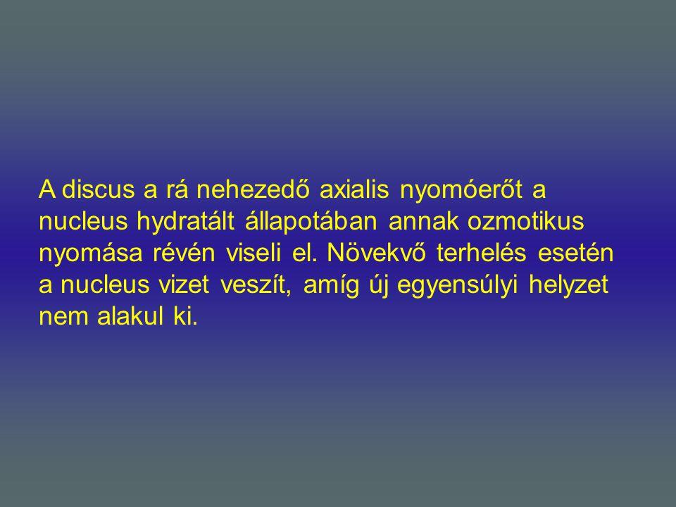 A discus a rá nehezedő axialis nyomóerőt a nucleus hydratált állapotában annak ozmotikus nyomása révén viseli el.