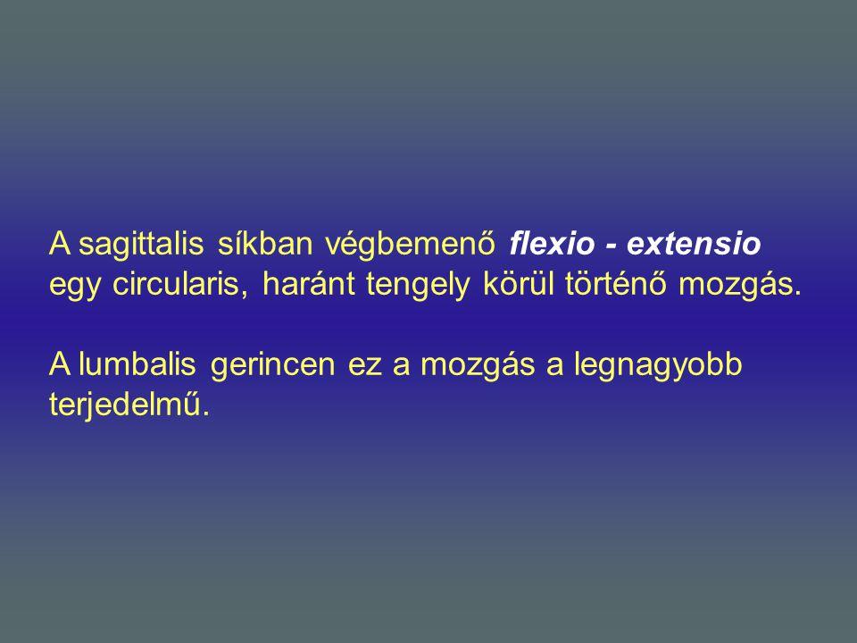 A sagittalis síkban végbemenő flexio - extensio egy circularis, haránt tengely körül történő mozgás.