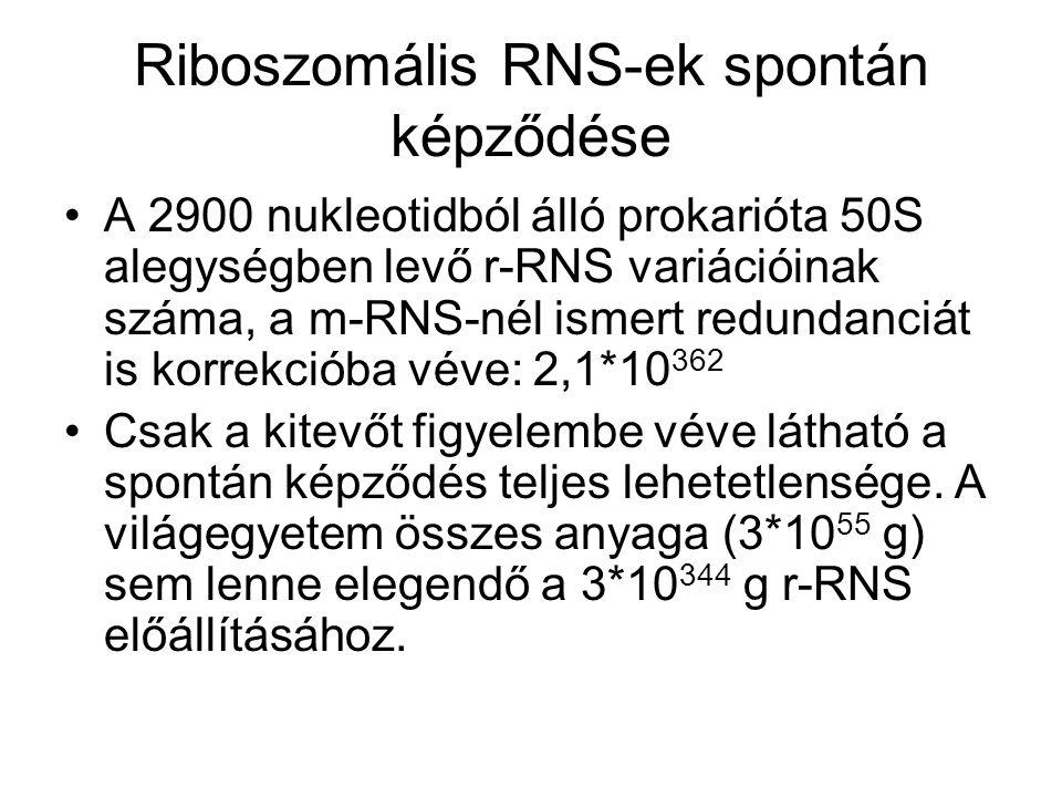 Riboszomális RNS-ek spontán képződése