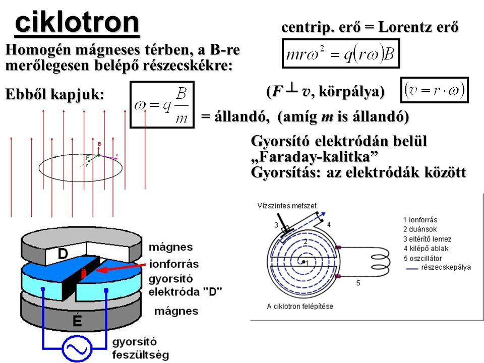 ciklotron centrip. erő = Lorentz erő Homogén mágneses térben, a B-re