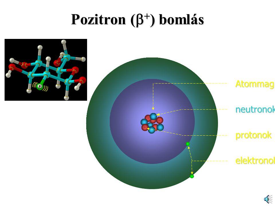 Pozitron (+) bomlás Atommag neutronok 18F-FDG + protonok elektronok