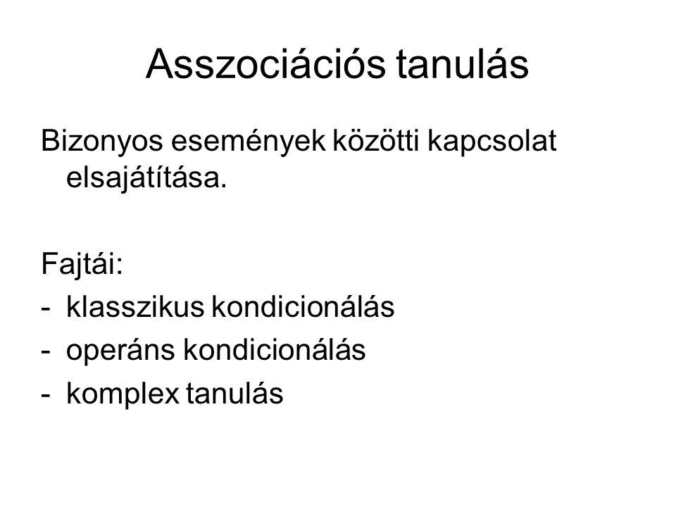 Asszociációs tanulás Bizonyos események közötti kapcsolat elsajátítása. Fajtái: klasszikus kondicionálás.