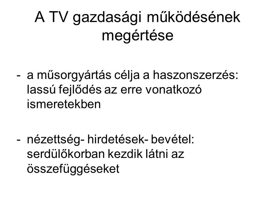A TV gazdasági működésének megértése