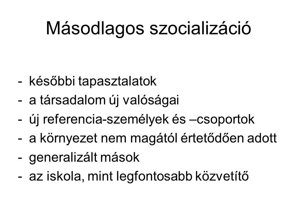 Másodlagos szocializáció