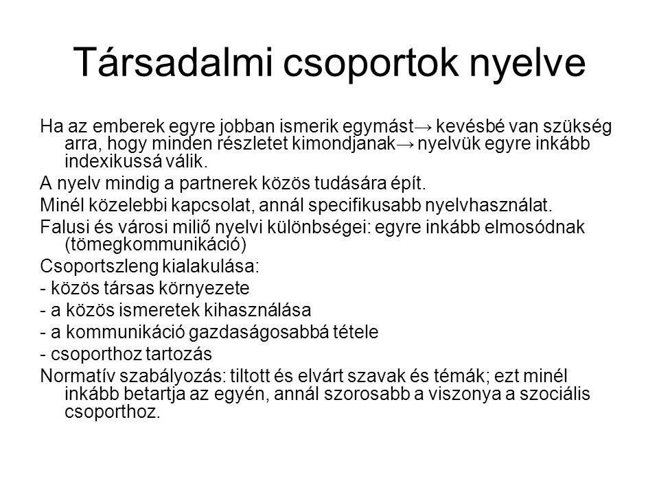 Társadalmi csoportok nyelve