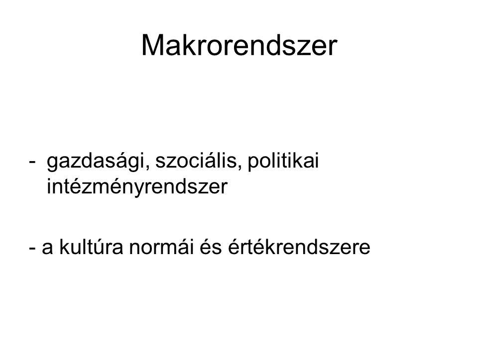 Makrorendszer gazdasági, szociális, politikai intézményrendszer