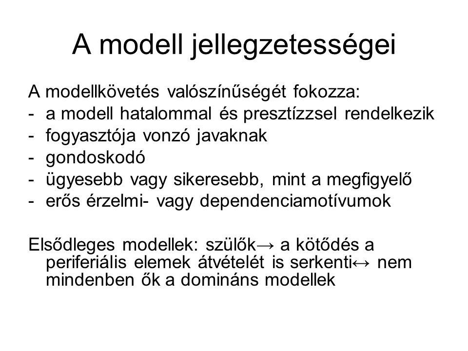 A modell jellegzetességei