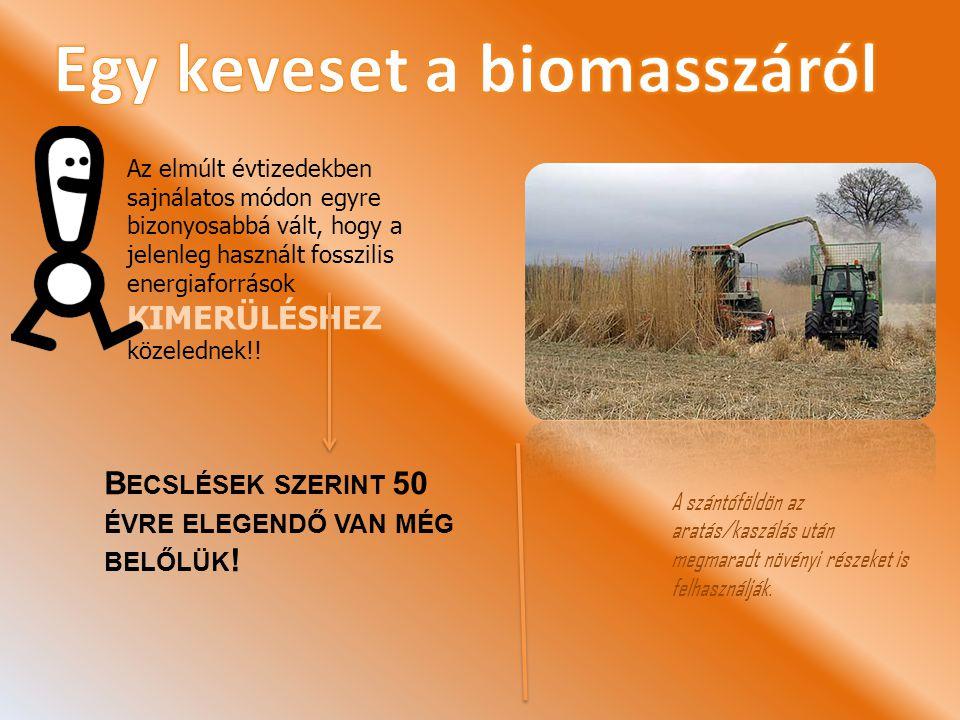 Egy keveset a biomasszáról
