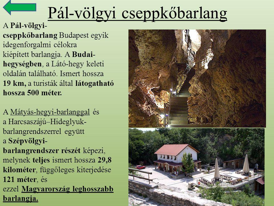 Pál-völgyi cseppkőbarlang