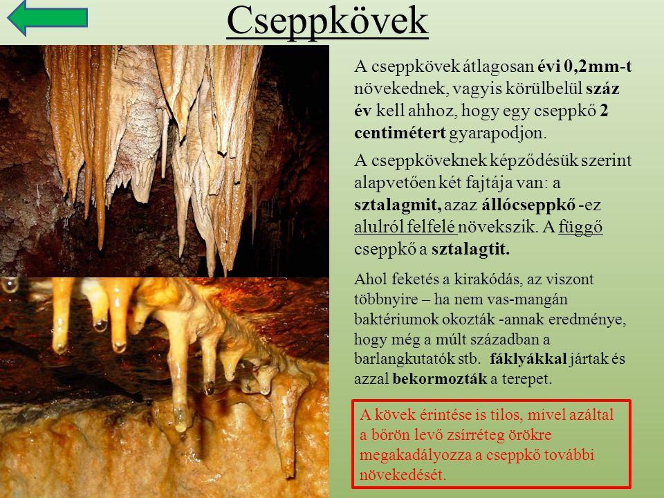 Cseppkövek A cseppkövek átlagosan évi 0,2mm-t növekednek, vagyis körülbelül száz év kell ahhoz, hogy egy cseppkő 2 centimétert gyarapodjon.