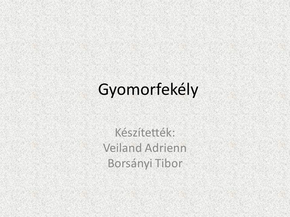 Készítették: Veiland Adrienn Borsányi Tibor
